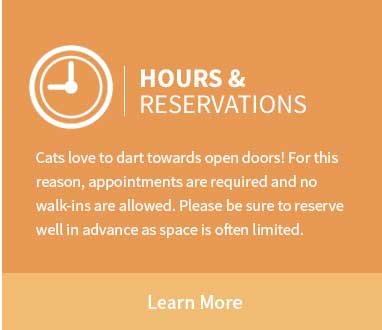 Catnaps Hotel Hours - cat boarding WNY